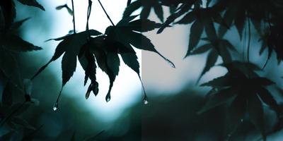 【大門美奈】雨と古都の幻想を撮る