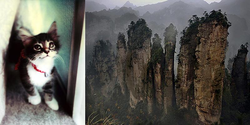 「ミライのキオク」安珠 vol.1 未来の記憶とは