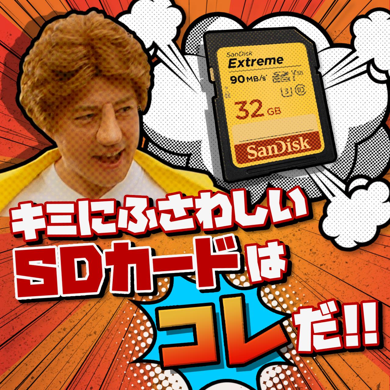 """""""モーリー&キャサリン""""のSDカード選び ~押さえておきたい2つのポイント~"""