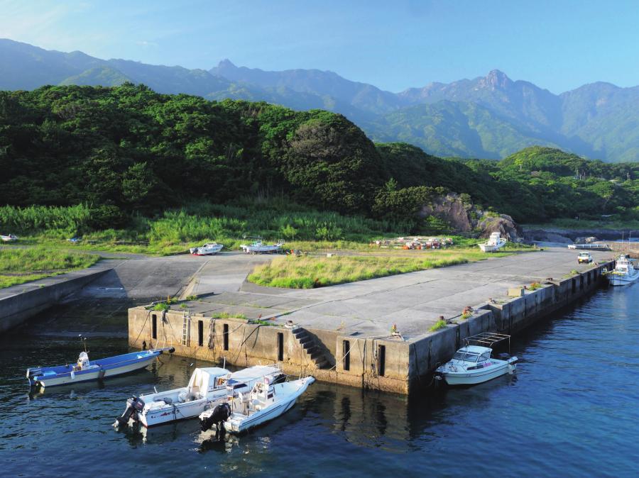記録メディア : サンディスク エクストリーム プロ SDXC UHS-Ⅱカード/撮影地 : 鹿児島・屋久島湯泊