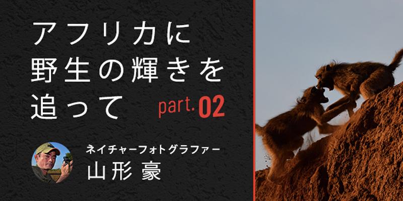 アフリカに野生の輝きを追って<br>Part 2 高速連写でアクションシーンを狙う