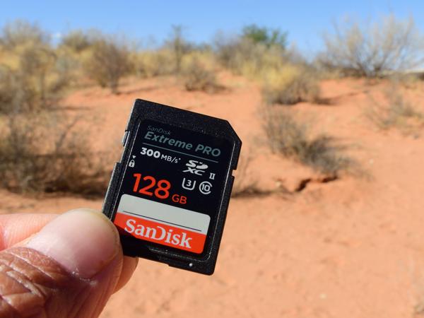 私が今回南部アフリカでのフィールドワークで使用したSanDisk Extreme Pro UHS-II 128GB SDカード。